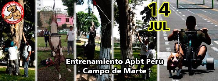 Apbt Peru Entrenamiento Domingo 14 de Julio