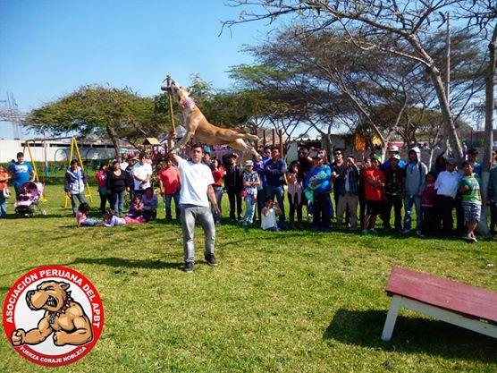 Exhibicion Pit Sport – Huacho 10NOV2013