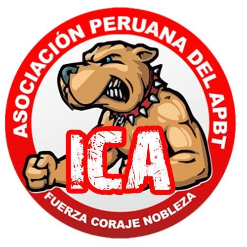 logo-apbtperu-ica