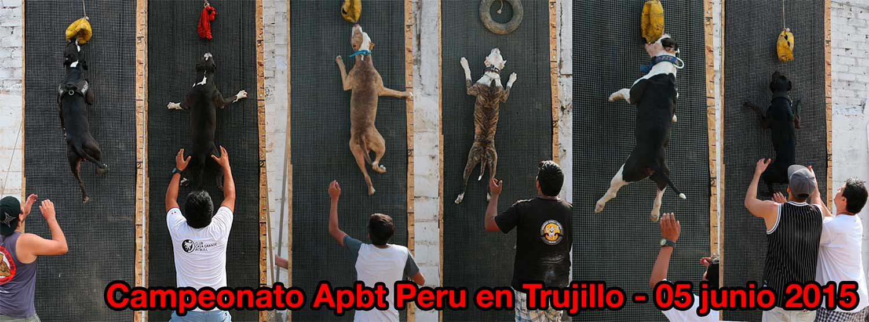 Campeonato APBT PERU en TRUJILLO – 5 JULIO 2015