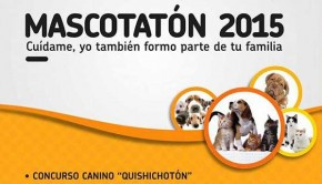 mascotaton-2015-tarapoto-feature
