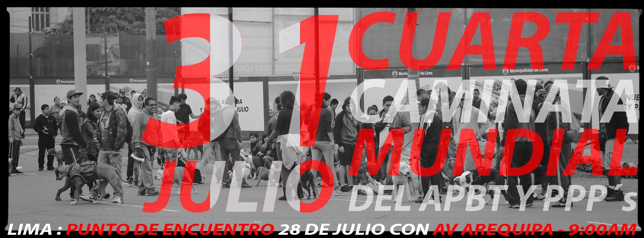 CUARTA CAMINATA PITBULL MUNDIAL 31 de JULIO 2016 / Hashtag -> #caminatapitbullmundial