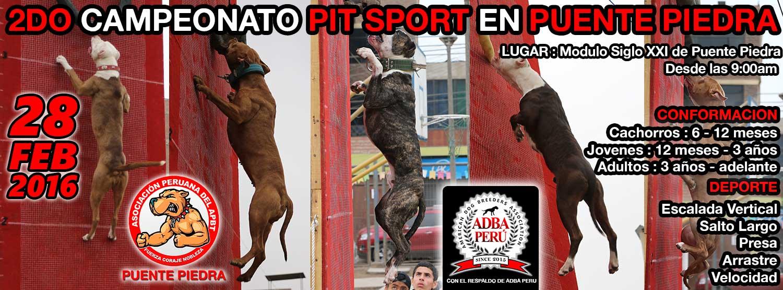 2DO CAMPEONATO PIT SPORT EN PUENTE PIEDRA