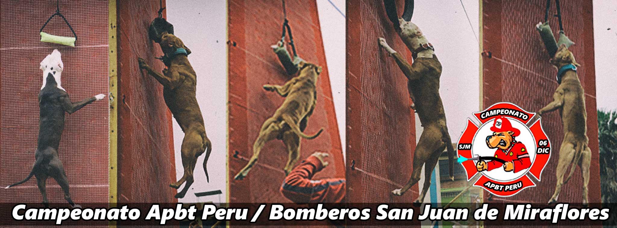 Campeonato Apbt Peru / Bomberos San Juan de Miraflores