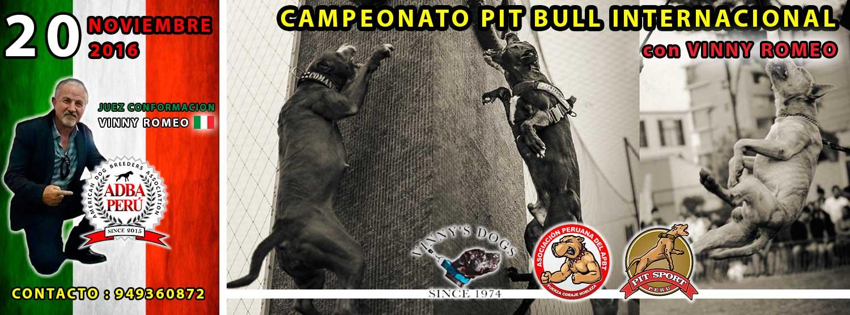 Campeonato Pit Bull Internacional – Apbt Peru con Vinny Romeo