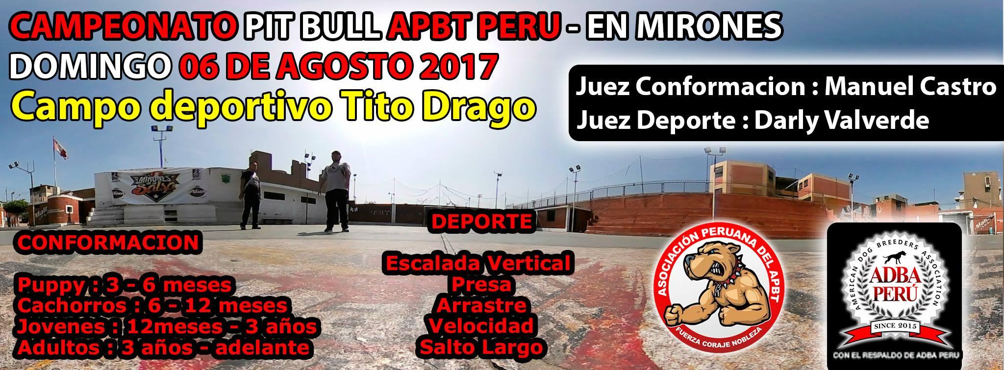 Campeonato Pit Bull Apbt Peru en Mirones