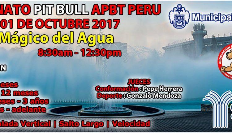 Campeonato Pit Bull Apbt Peru en el Circuito Mágico del Agua