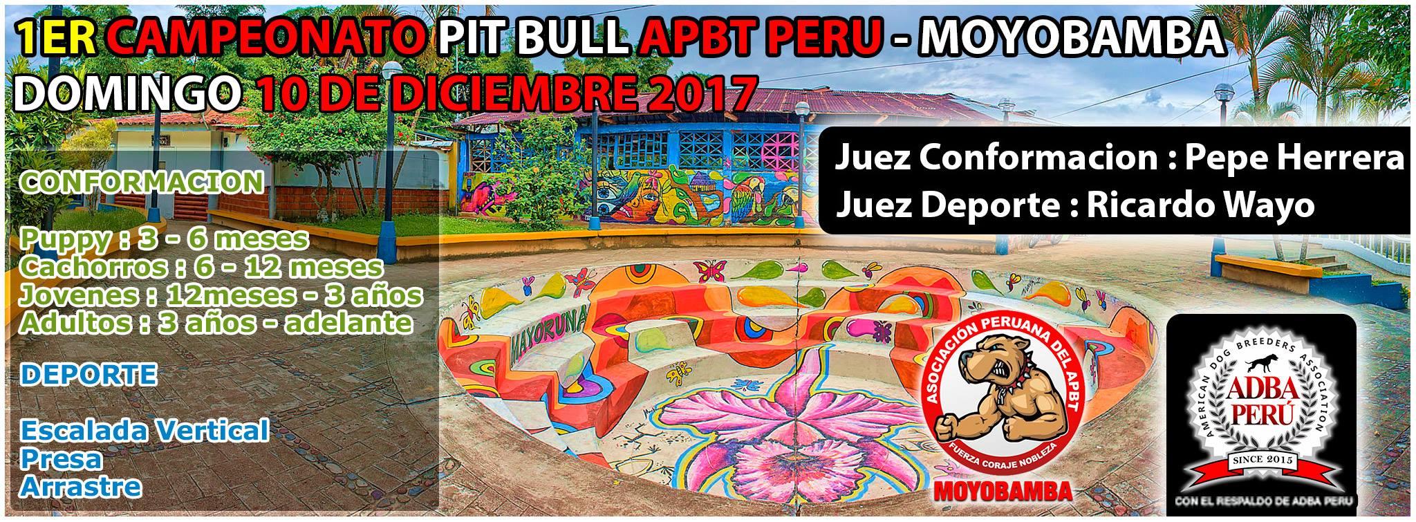 1er Campeonato Pit Bull Apbt Peru – Moyobamba