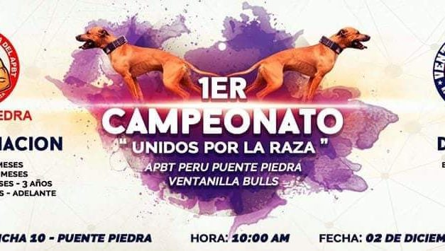 "1er Campeonato ""Unidos por la raza"" – XXXVIII Campeonato Apbt Peru"