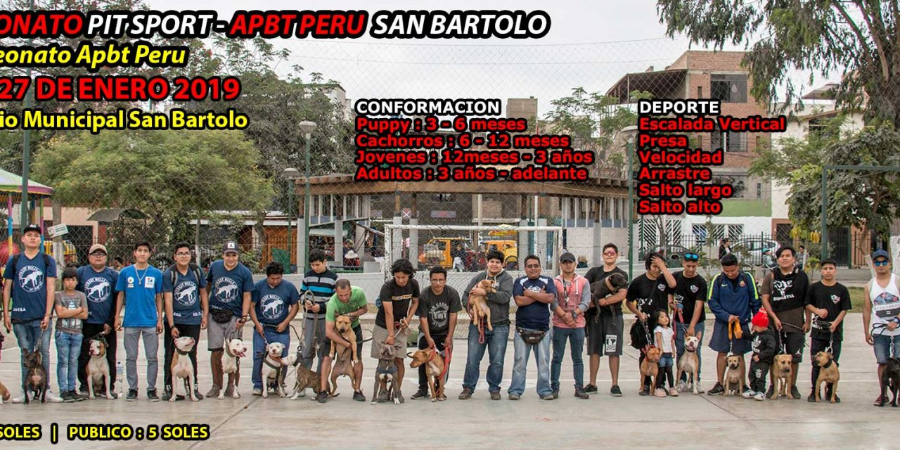 Campeonato Pit Bull Apbt Peru – San Bartolo – XXXIX Campeonato Apbt Peru