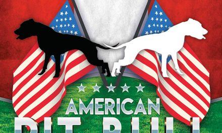 Fun Show del American Pit Bull Terrier